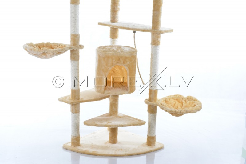 Cat House FD670 (WK1243) Beige