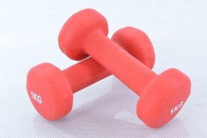Two vinyl dumbbells 1 kg