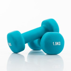 Two vinyl dumbbells 1,5 kg